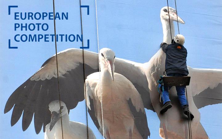 Avrupa Fotoğraf Yarışması 2011