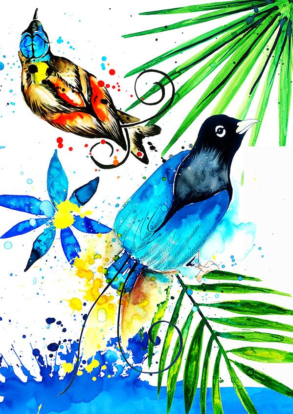 gamze yalcin birds of paradise