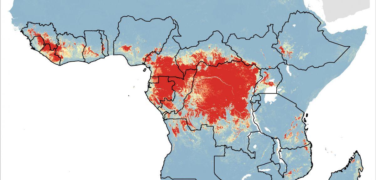 Editörün görsel eki: Batı Afrika Ebola salgını (2013-2016), healthmap.org